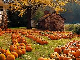 Fall Traditions