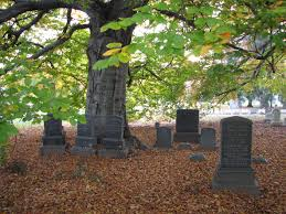 From Diamonds to Trees: 5 Cool Ways to Afterlife