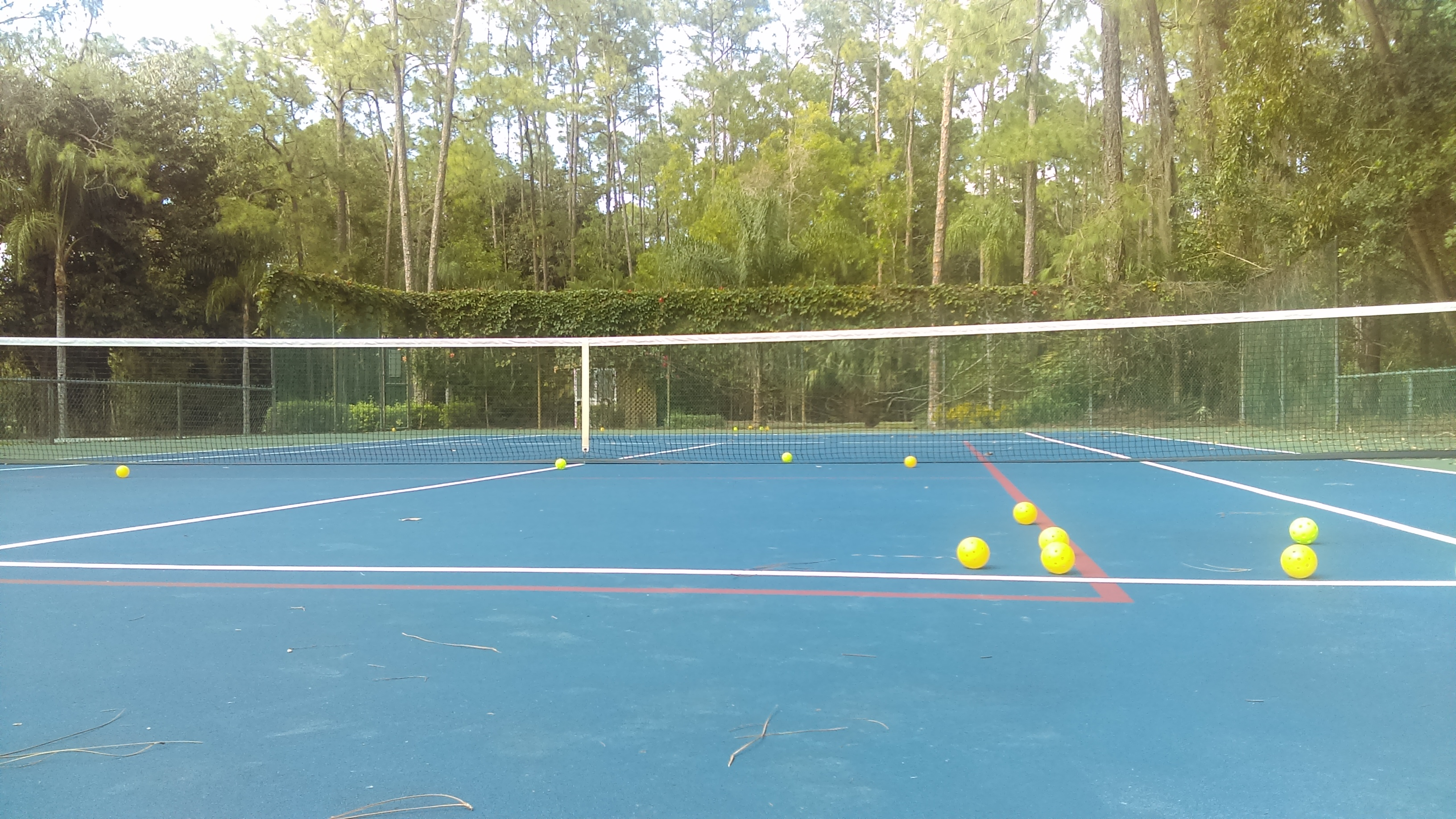 Pickleball – No Pickles Needed