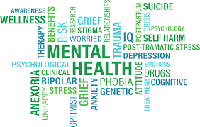 High School Students Experience Mental Health Complications