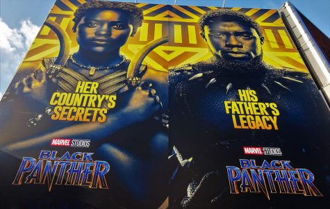 Black Panther: A Review